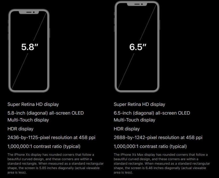 iPhone 11 display size