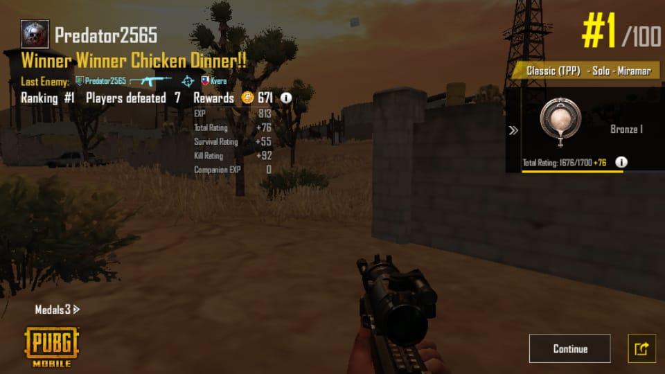 Winner-Winner Chicken Dinner in PUbG